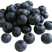 Best antioxidant foods
