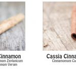 honey and cinnamon drink faq
