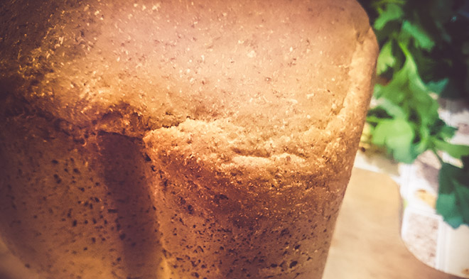 protein bread recipe