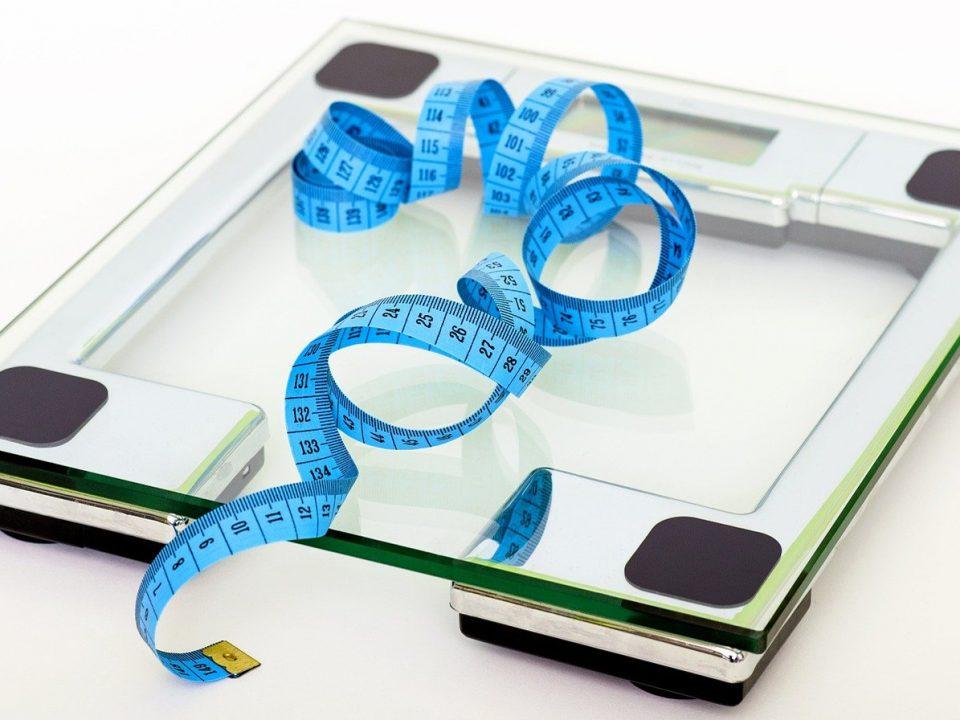 The-Brown Fat Revolution Diet